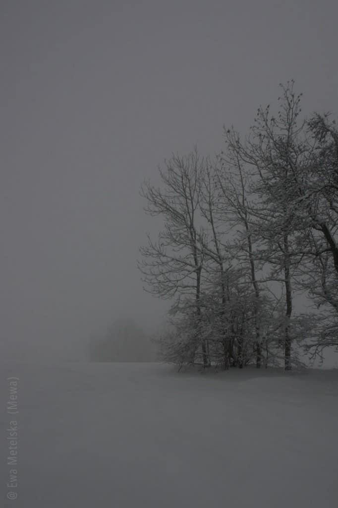 Jura_Winter_1